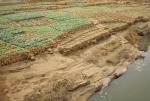 MALI 239 (EL PAIS DE DOGONES-PARTE ALTA DE LA FALLA) A LOS CUTIVOS ESTAN DISPUESTOS DE UN FORMA EXTREMADAMENTE MINUCIOSA