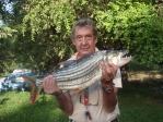 """ZAMBIA 47 KAFUE SUR. MI """"TIGER FISH"""" 5 KILOS 100 GRAMOS , EL MAS COMBATIVO DE TODOS LOS PECES"""