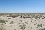 UZBEKISTAN 13 (DENTRO DE EL MAR DE ARAL) EN 1960, ERA EL CUARTO LAGO MAYOR DEL MUNDO, CON UN ÁREA APROXIMADA DE 68.000 KM² DE AGUA SALADA