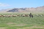 MONGOLIA 138 (HACIA ARVAYHEER) ENCUENTRO CON UN JOVEN PASTOR