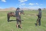 MONGOLIA 139 (HACIA ARVAYHEER) INTENTANDO DIFICILMENTE CONSEGUIR INFORMACION