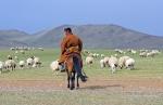 MONGOLIA 174 (GOBI-HACIA GUCHIN US) UN PASTOR MONGOL