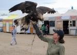 MONGOLIA 371 (KARAKORUM) EL AGUILA REAL, PUEDE LLEGAR MEDIR 1 M. DE LONGITUD DEL PICO A LA COLA