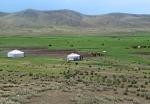 MONGOLIA 444 (HACIA EL MONASTERIO DE AMARBAYASGALANT) VEMOS YURTAS POR TODAS PARTES...