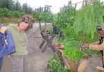 SIBERIA 2°, 107 (P0R EL OBLAST DE IRKUTST) EN LOS MONTES JAMAR DABAN, VENDEDORES DE PLANTAS MEDICINALES PARA USAR EN LAS TIPICAS SAUNAS SIBERIANAS