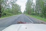 ESTONIA 1 (HACIA LA FRONTERA) POR LA MAGNIFICA CARRETERA RUSA E-49G
