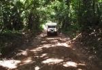 GHANA 16 (LA RESERVA DE BOBIRI Y SANTUARIO DE MARIPOSAS) TIENE UNA SUPERFICIE DE 54,65 KM2