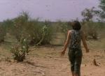 NIGER 19 (UNA PLAGA DE LANGOSTAS) DE PASEO POR MEDIO DEL ENJAMBRE