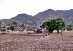 CAMERUN 1 (EXTREMO NORTE) DESPUES DE LA TRAUMATICA EXPERIENCIA EN LA FRONTERA DE KERAOUA EN NIGERIA, POR FIN ENTRAMOS EN CAMERUN