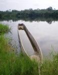 CONGO BRAZZAVILLE 24. (DISTRITO DE LA CUVETTE, POBLACION DE OYO) EL RIO ALIMA ES UN AFLUENTE DEL RIO CONGO, TIENE UNOS 500 KM. DE LONGITUD